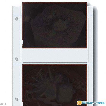 PrintFile 5x7 film preservers